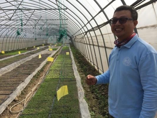 Taiwanese farm manager